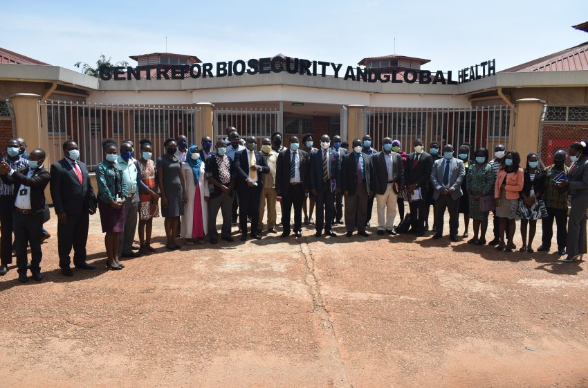 Monitoring Antimicrobials usage in Livestock Farming in Uganda: Research and Systems Project Launched